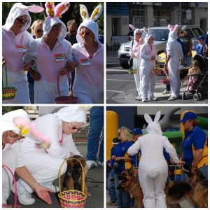 Easter Bunnies everywhere............
