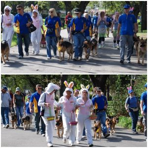Members, friends, dogs ........ and bunnies begin the walk to Etihad Stadium